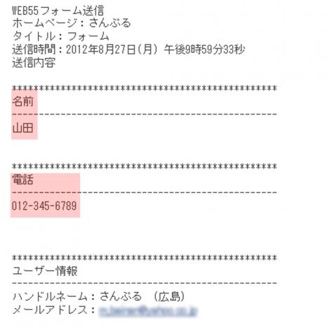 WEB55 ビジネスブログ TCI フォーム作成