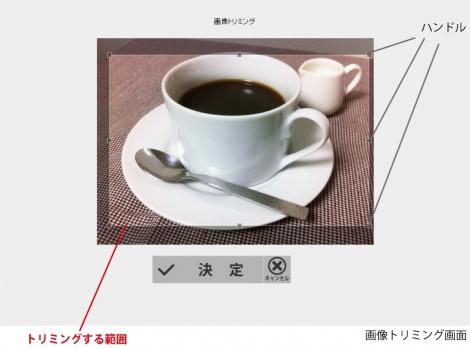 WEB55 ビジネスブログ 写真のトリミング;;
