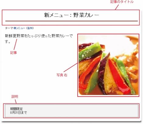 WEB55ビジネスブログおまかせパック 写真 右;;