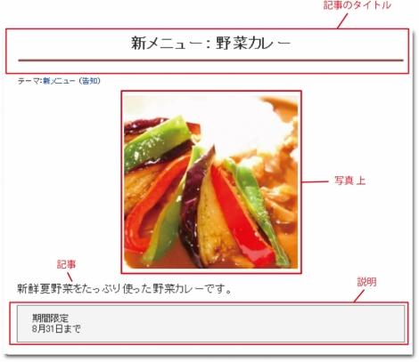 WEB55ビジネスブログおまかせパック 写真 上;;