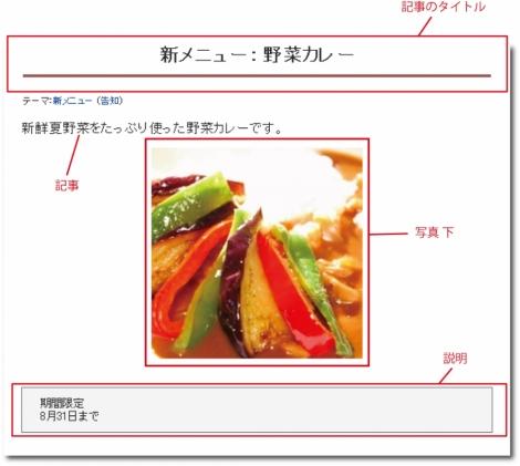 WEB55ビジネスブログおまかせパック 写真 下;;
