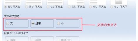 WEB55ビジネスブログおまかせパック 文字の大きさの指定