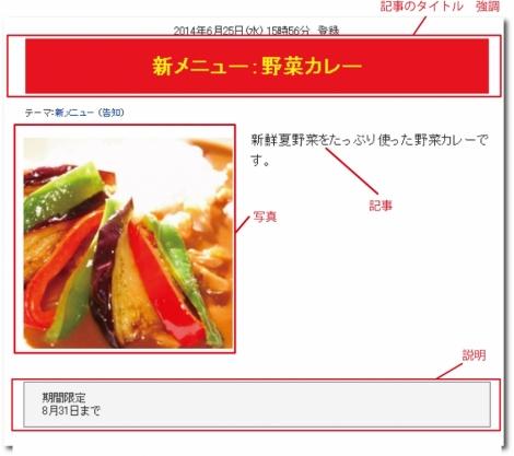 WEB55ビジネスブログおまかせパック 強調;;