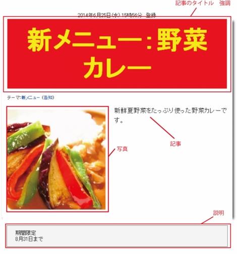 WEB55ビジネスブログおまかせパック 強調大;;